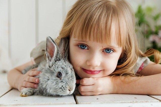 Potěšte své dítě domácím mazlíčkem